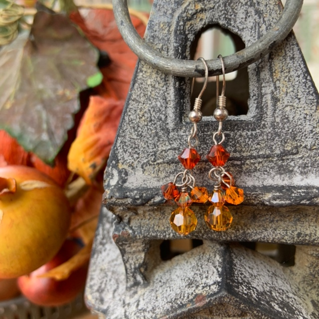 Color Captured Crystal Earrings